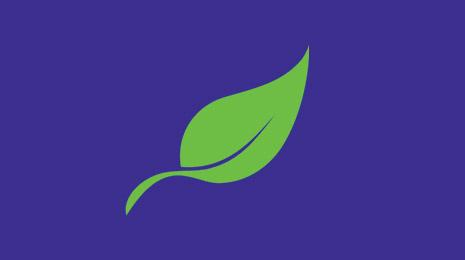 visuel plante