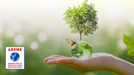 visuel Ademe : main ouverte portant un globe, un arbre et un papillon